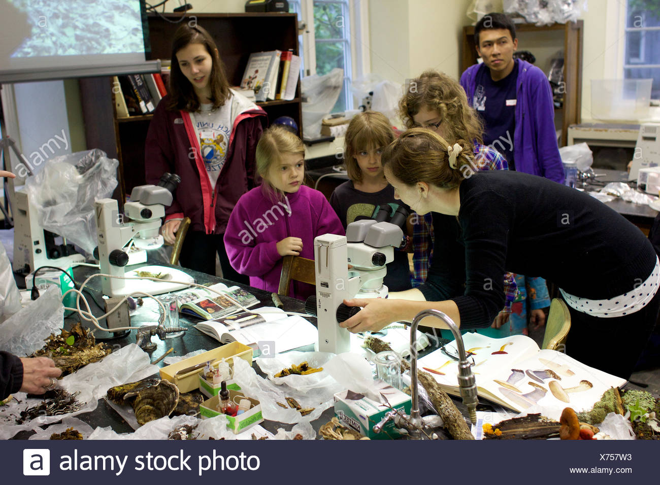 A mycology student shows young girls how to use a microscope. - Stock Image