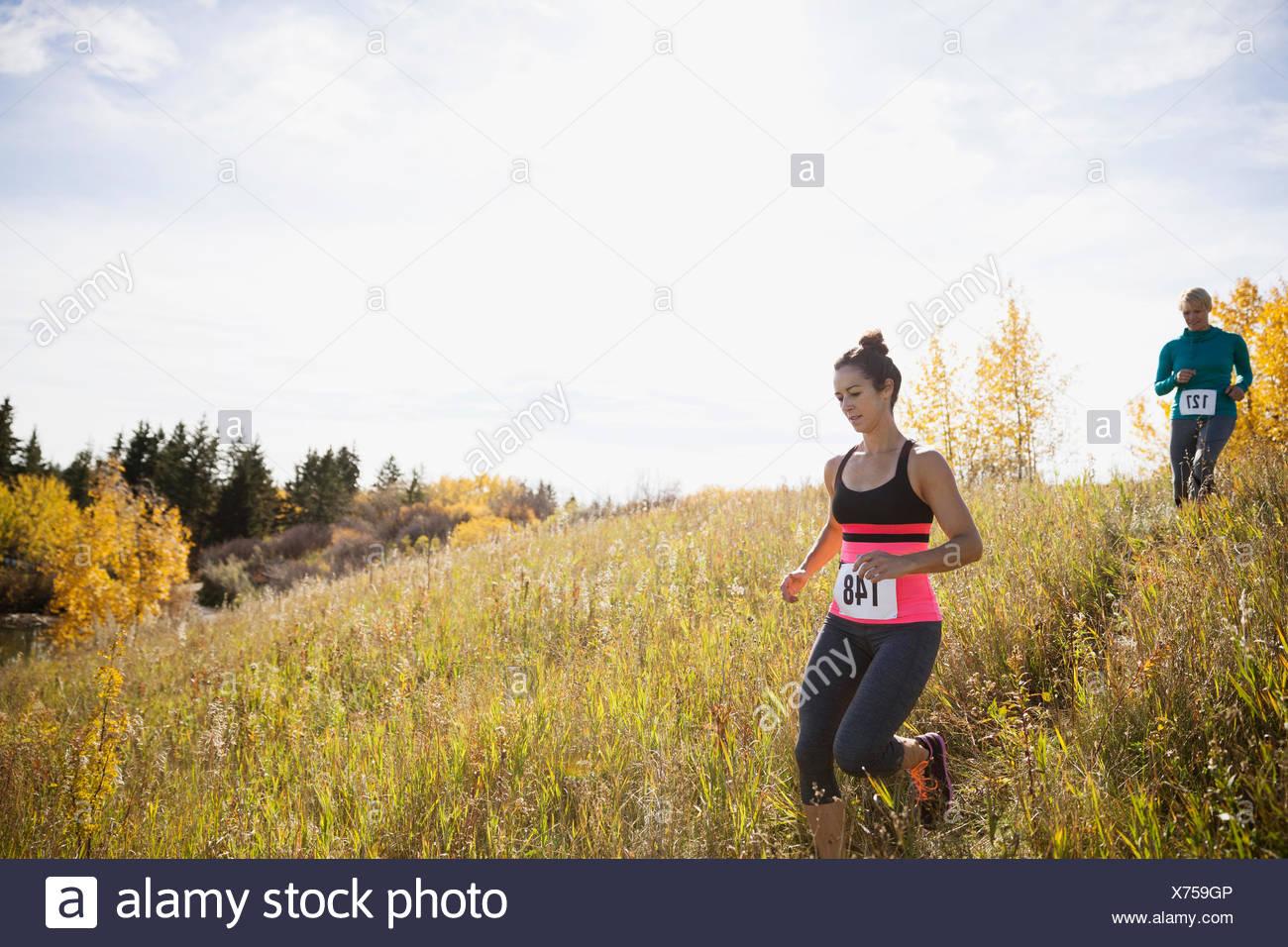 Runners descending sunny autumn slope - Stock Image