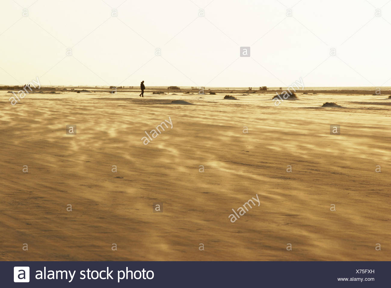 Beach, person, vastness, - Stock Image