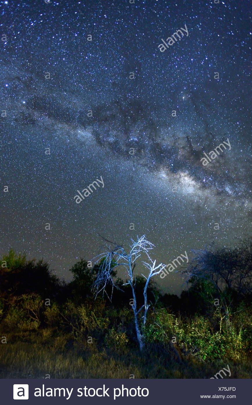 Africa, Namibia, Fiume Lodge, Night Sky, stars, desert, sky, astro, photography, Bloomfontein, sky, stars, starlit, spangled sky - Stock Image