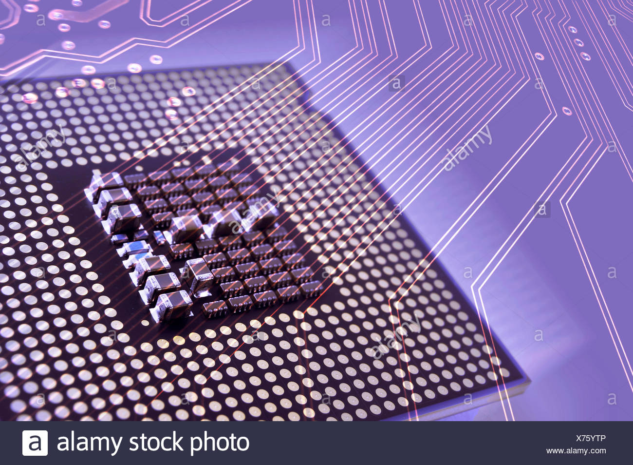 Computer processor and circuit board - Stock Image