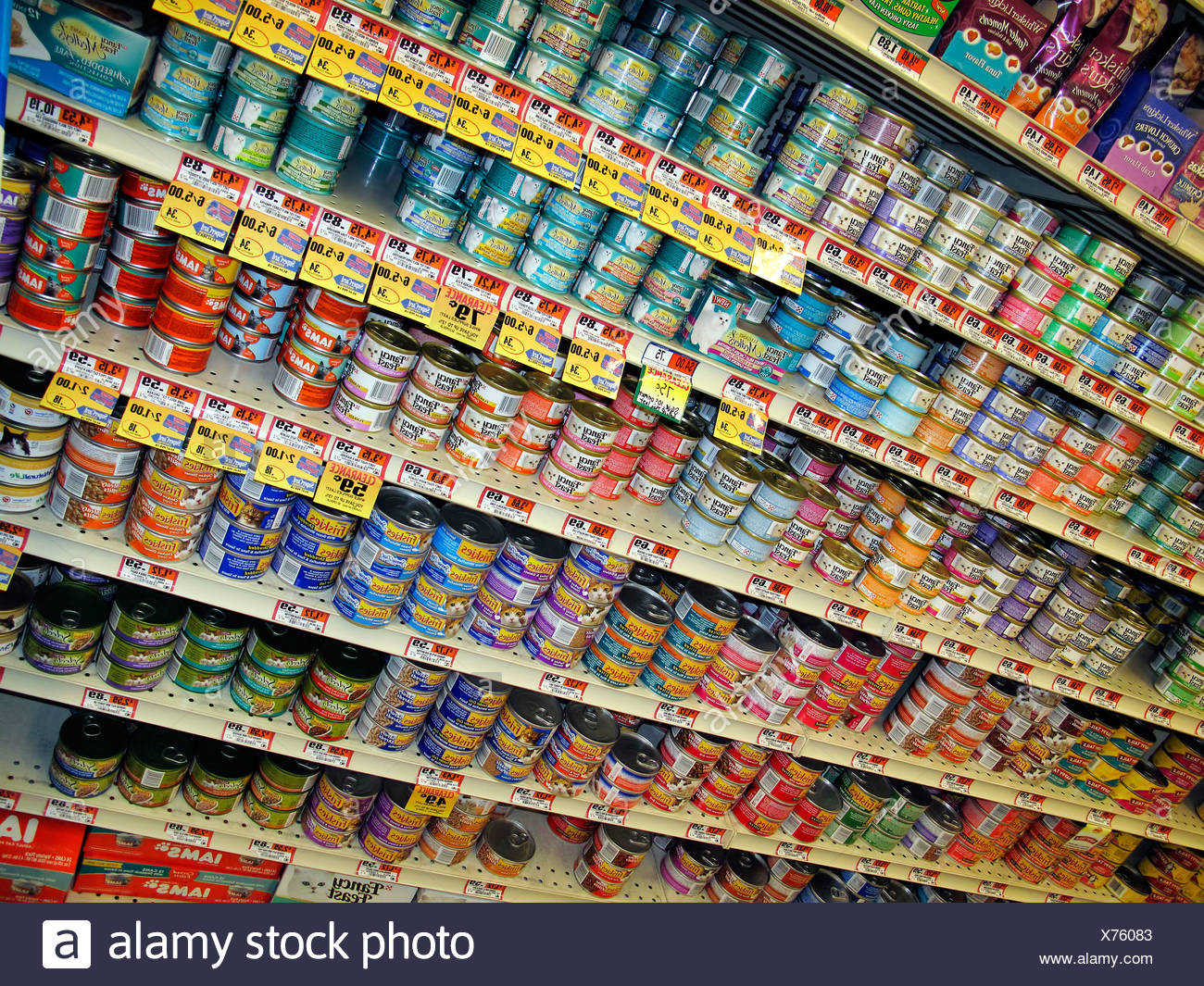 Variety of canned cat food products on a store shelf. - Stock Image