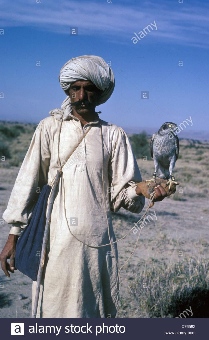 Sports & Pastimes - Falconery / falconer with Goshawk / Pakistan - Stock Image