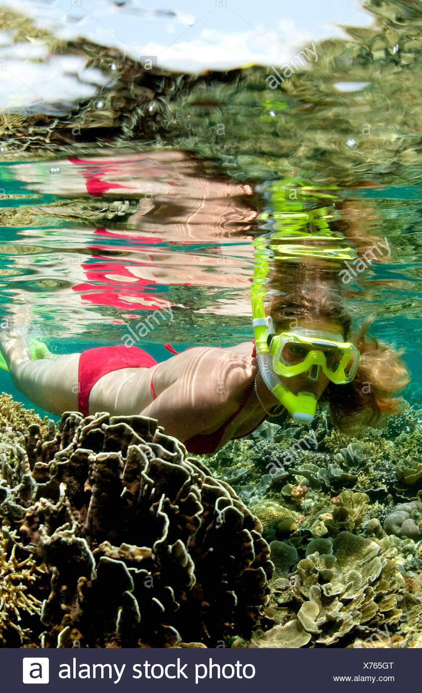 Snorkeler on coral reef. Stock Photo