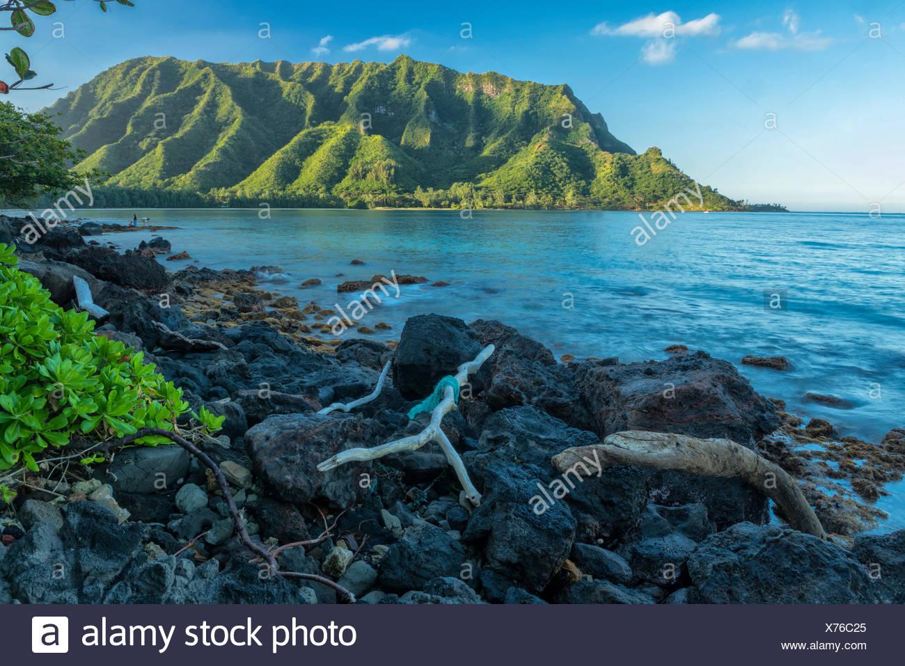 USA,Hawaii,Oahu,USA,Hawaii,Oahu,Kahana Bay,Kaawa - Stock Image