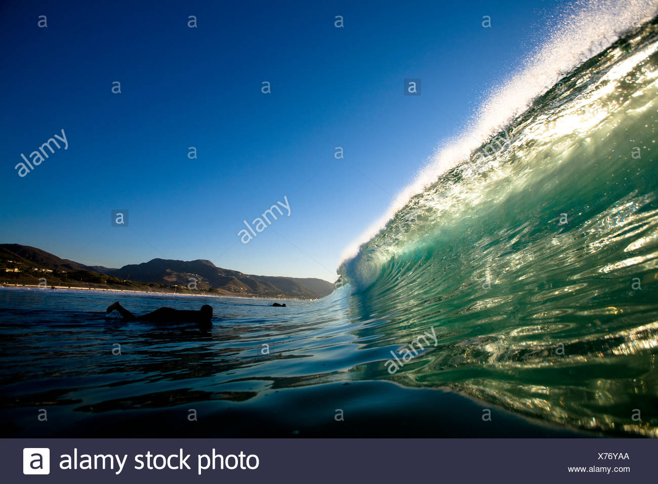 A male surfer gets ready to duck dive a backlit wave while surfing Zuma Beach in Malibu, California. - Stock Image