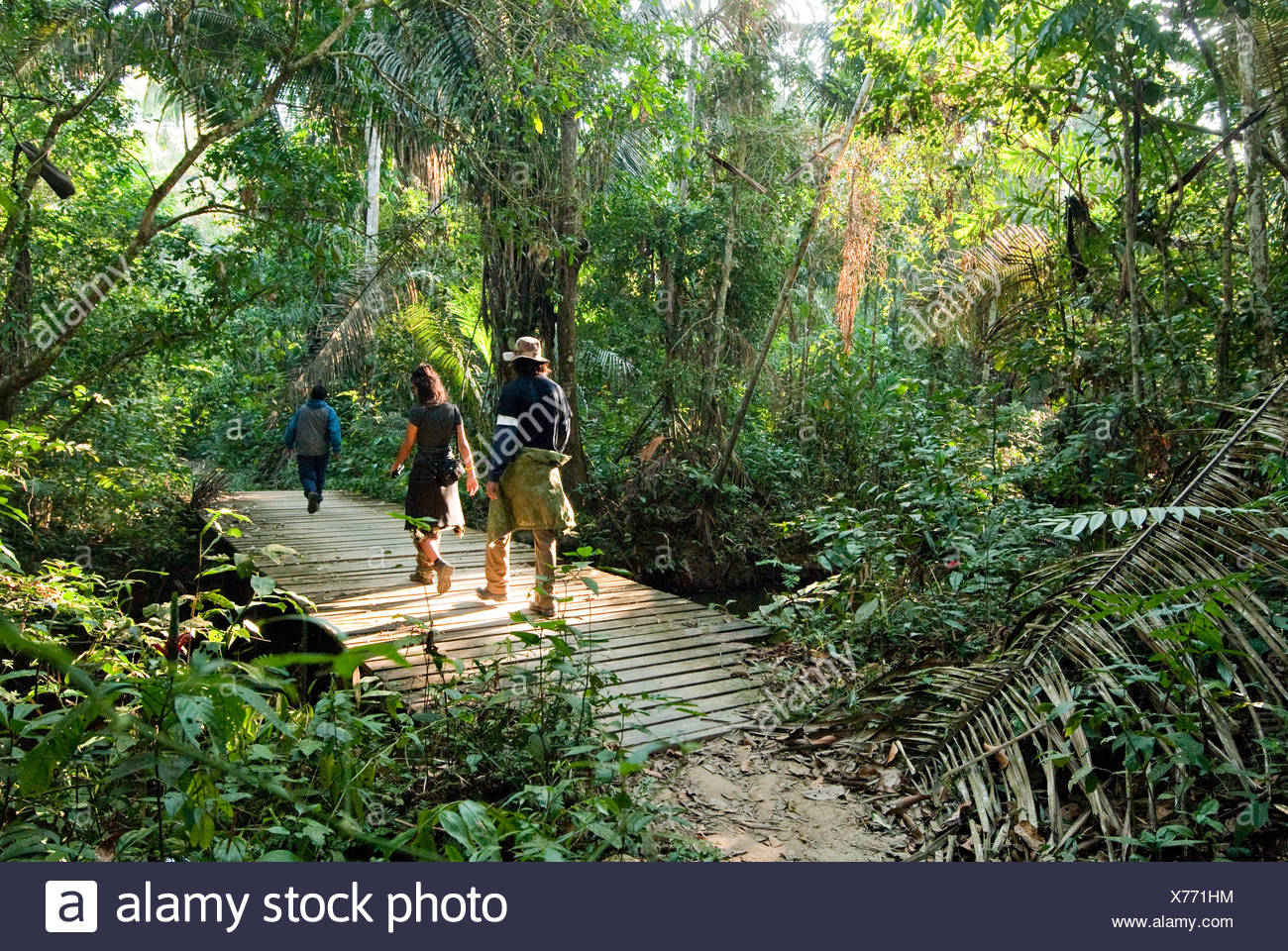 A man and woman walk through the amazon rainforest during the mid morning. - Stock Image