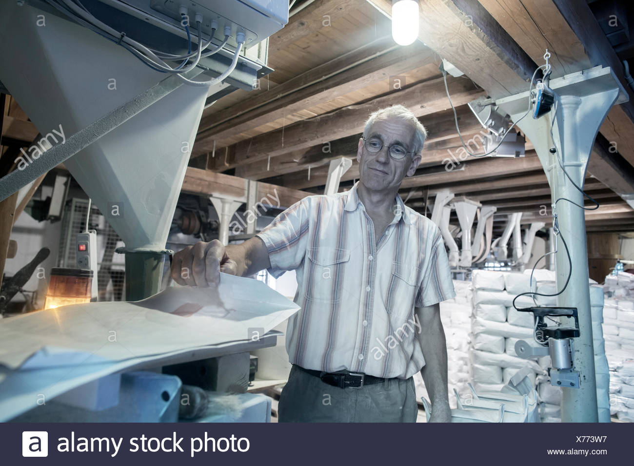 Male miller checking machine in wheat mill - Stock Image