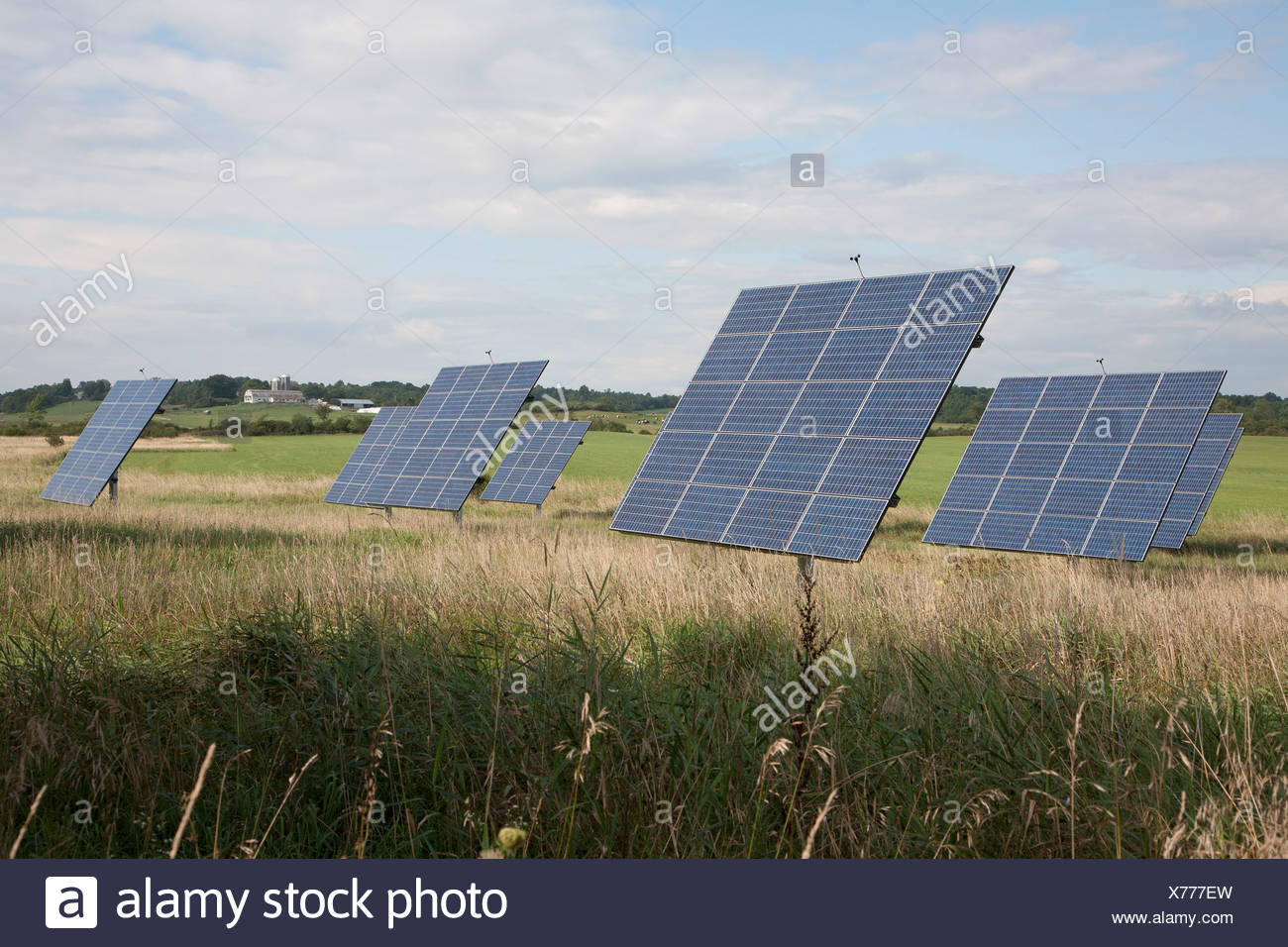 Solar panels in a field - Stock Image