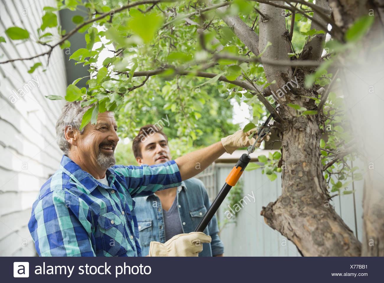 Tree Cutting Stock Photos & Tree Cutting Stock Images - Alamy
