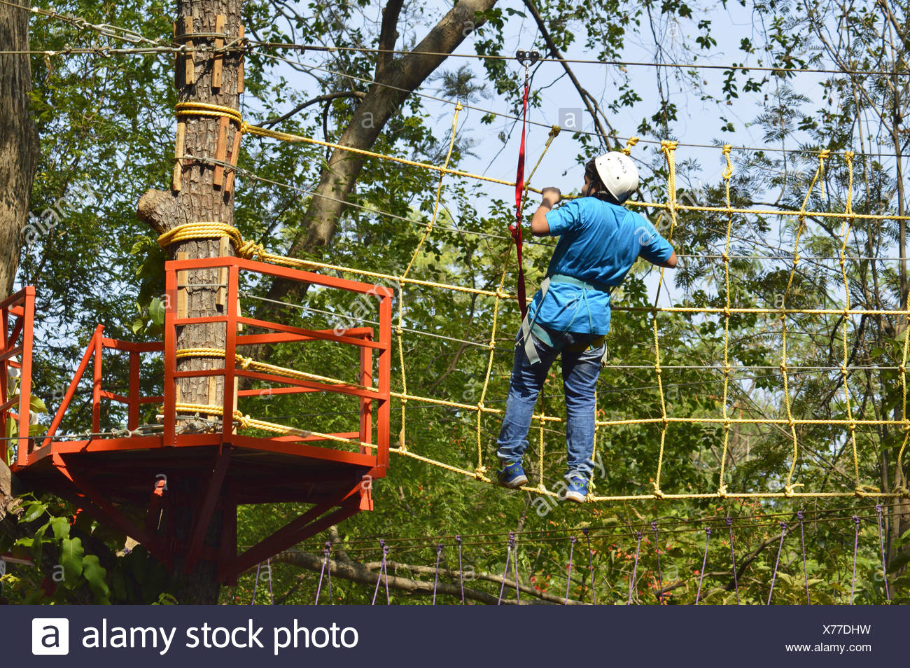 Rope obstacle on tree top - Stock Image