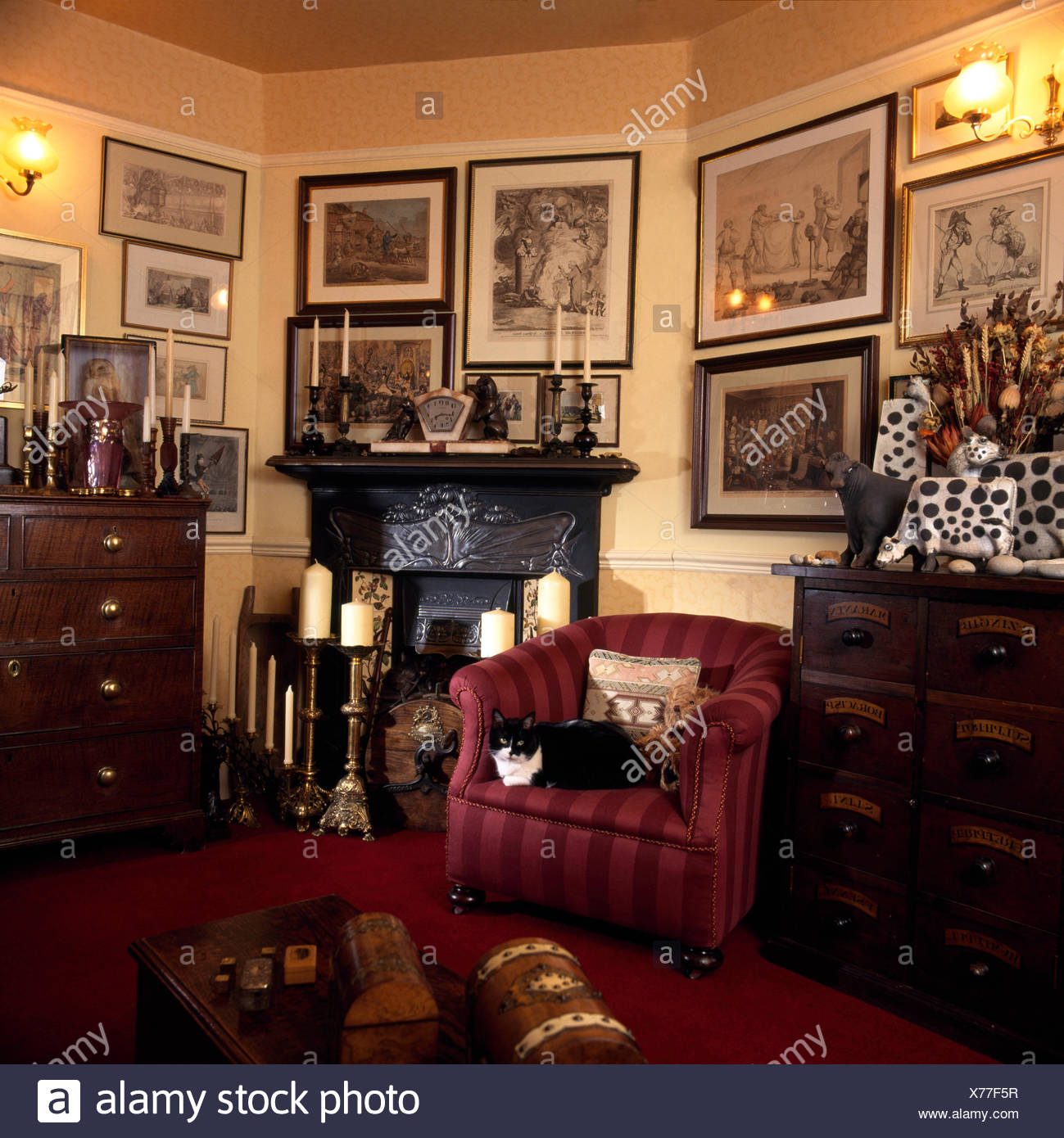 Victorian Sitting Rooms: Cat In Front Fireplace Stock Photos & Cat In Front