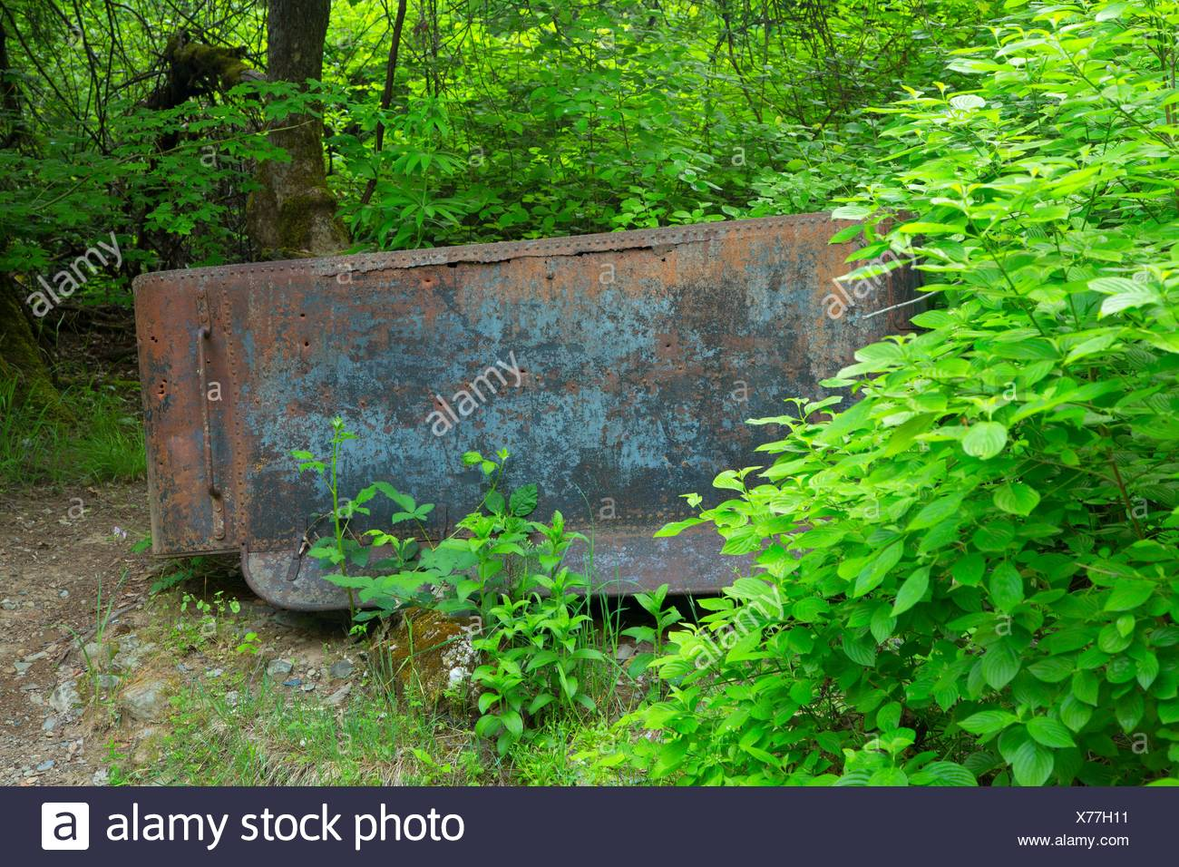 Water tank at Sims Flat Campground, Shasta-Trinity National Forest, California. - Stock Image