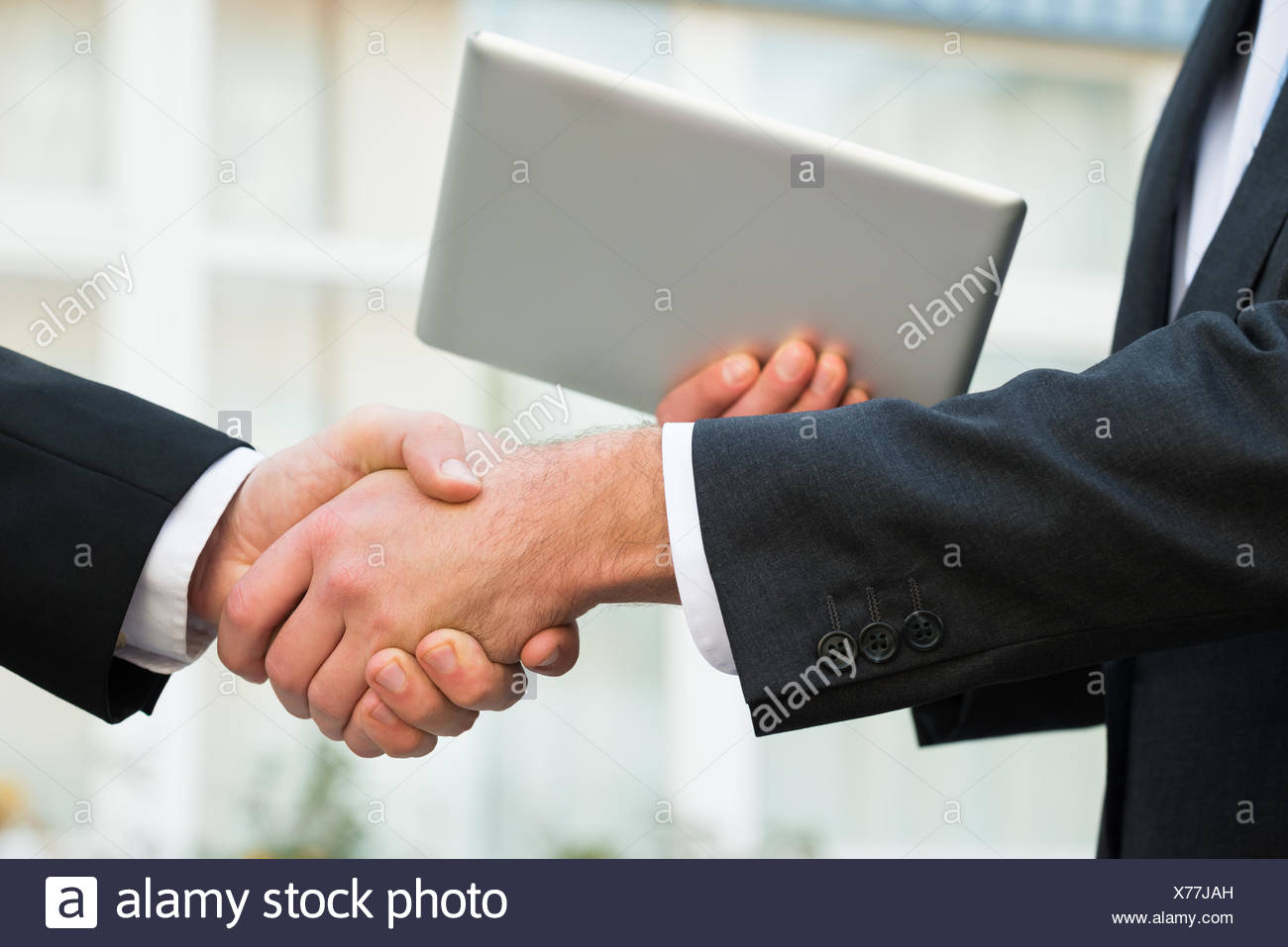 Businessman Shaking Hand With Partner Stock Photo
