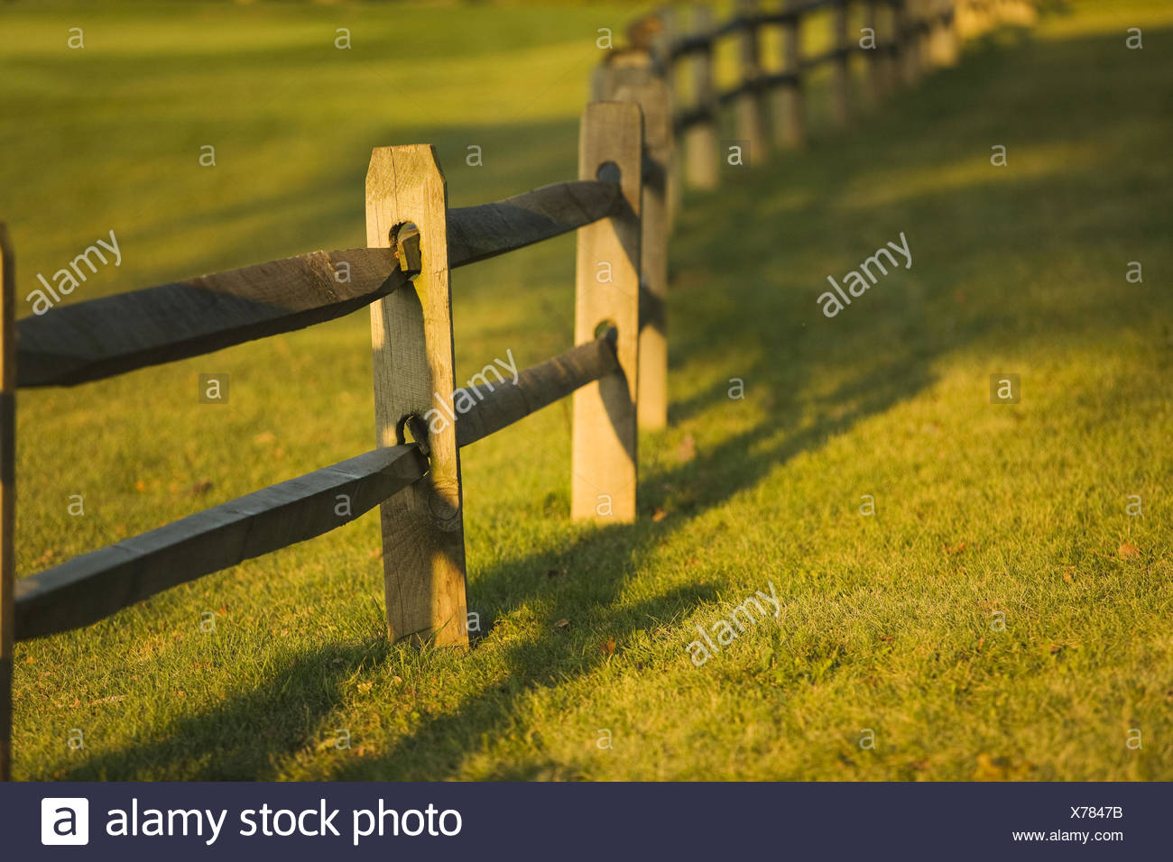 Split rail fence along golf fairway, wooden post and rails  Aurora, Illinois, USA - Stock Image
