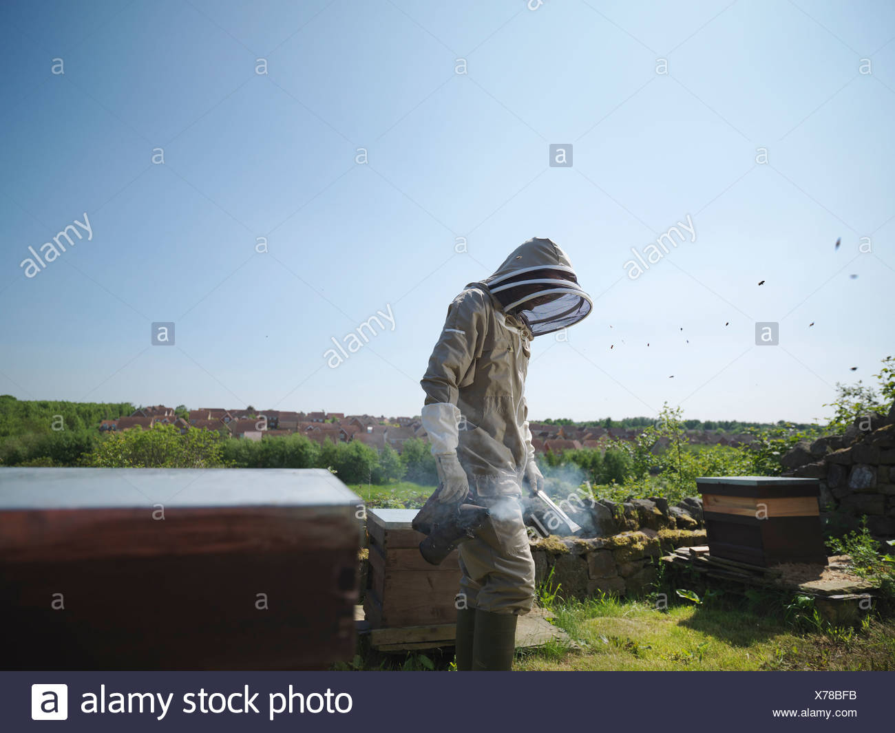 Beekeeper with smoker and hives - Stock Image