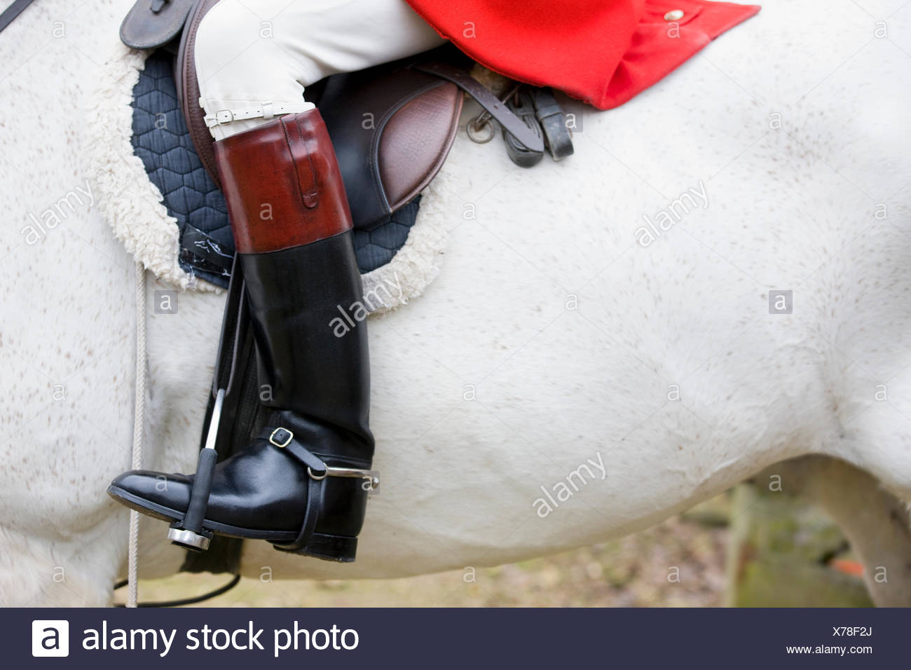 Close-up of boot of rider on horseback - Stock Image