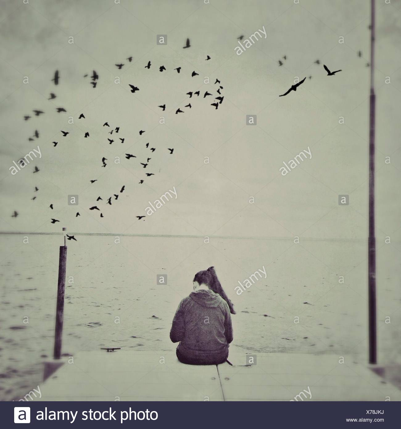 Rear View Of Woman Sitting At The Edge Of Pier With Birds Flying Over Sea - Stock Image