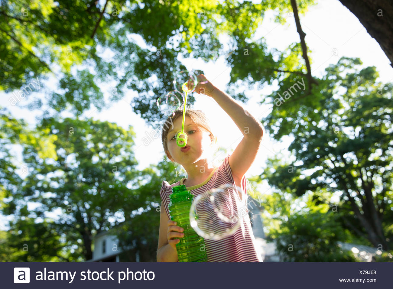 A young girl blowing bubbles in the air under the branches of a large tree. Stock Photo
