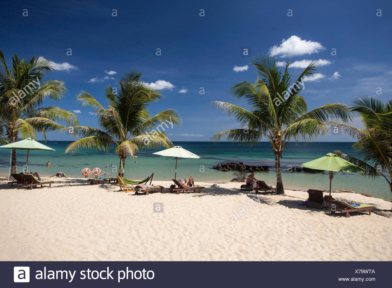 Beach, Seashore, sand beach, palms, palm beach, Eco, Lodge, island, Asian, Asia, outside, island, Phu, Quoc, Resort, South-East A - Stock Image