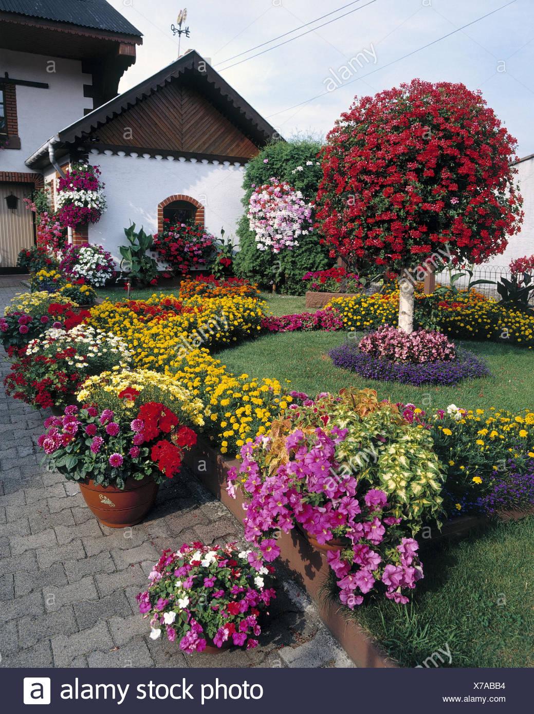 France, Alsace, residential house, garden, floral decoration