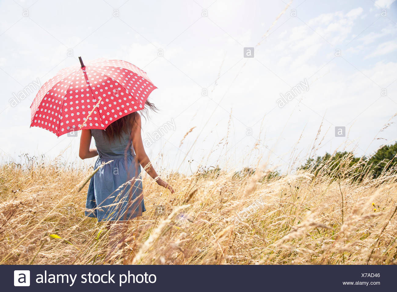Young woman in field with umbrella - Stock Image