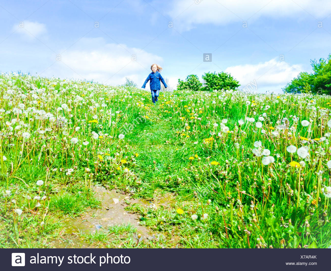 Boy running in a meadow Stock Photo