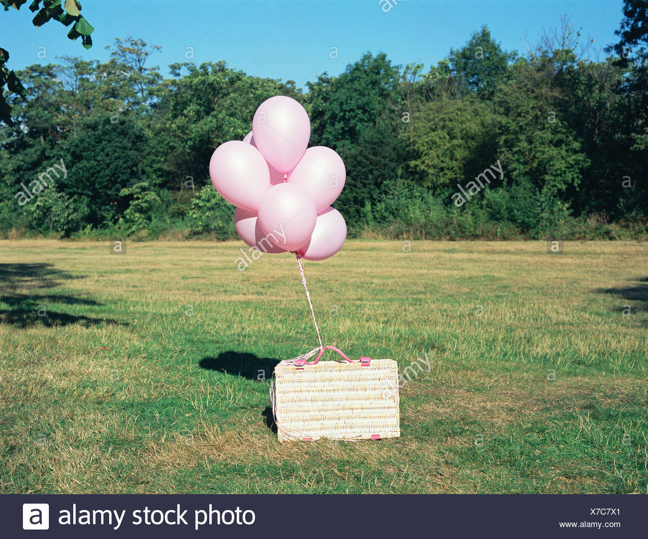 Balloons tied to a picnic basket - Stock Image
