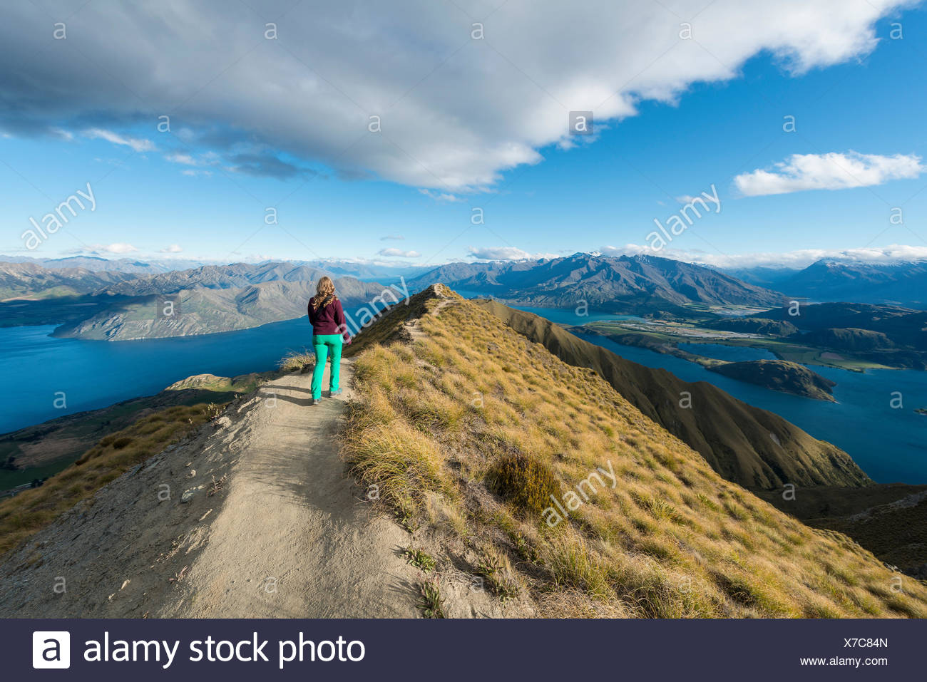 Woman hiking on ridge, view of mountains and lake, Roys Peak, Lake Wanaka, Southern Alps, Otago Region, Southland, New Zealand - Stock Image