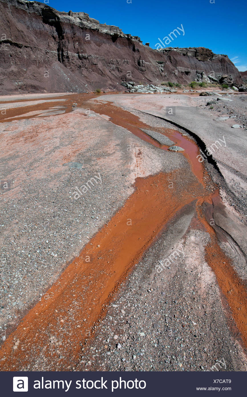 Lithodendron Wash in the Painted Desert of Petrified Forest National Park, Arizona. - Stock Image