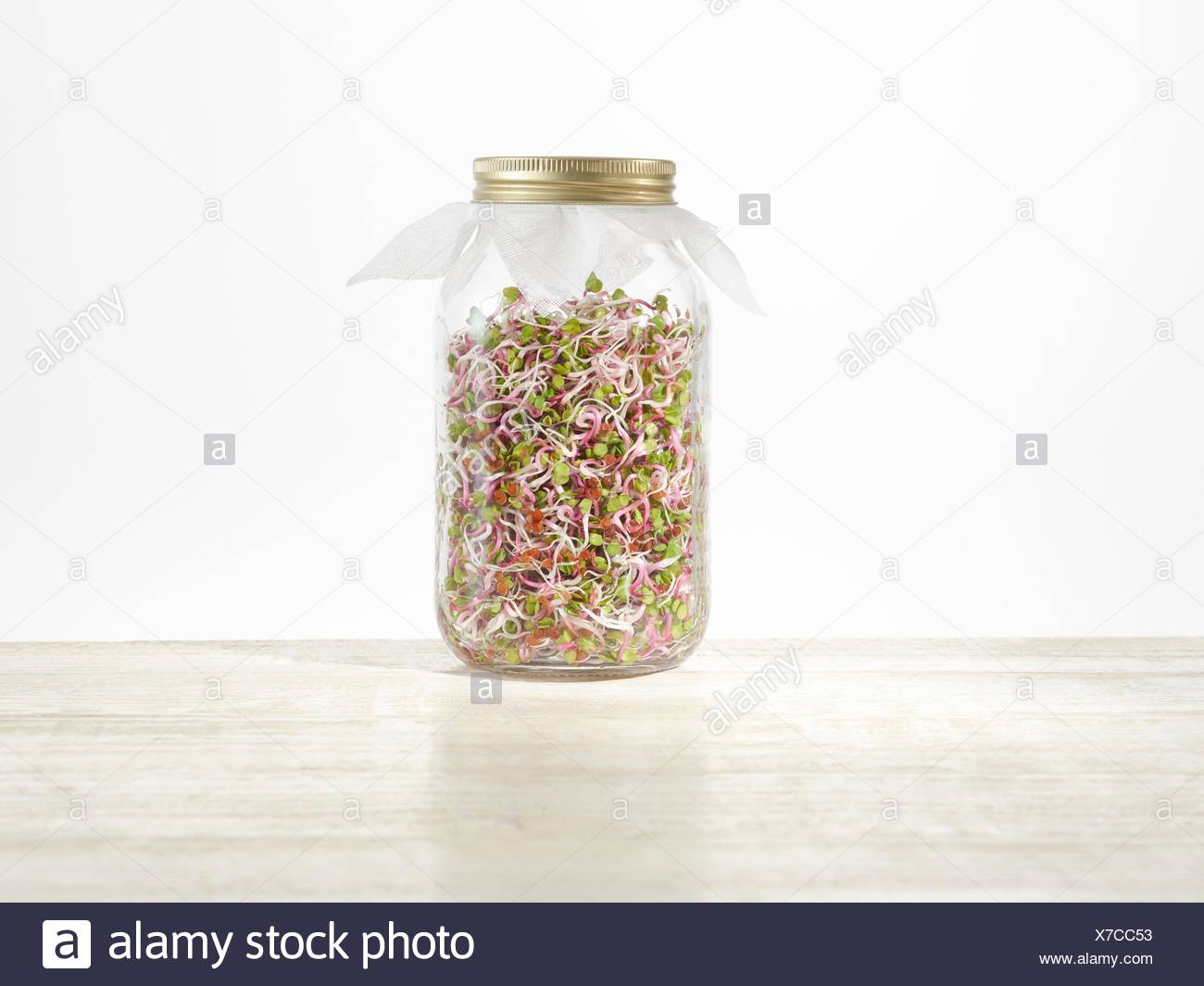 Sprouting rose radish in a jar. - Stock Image