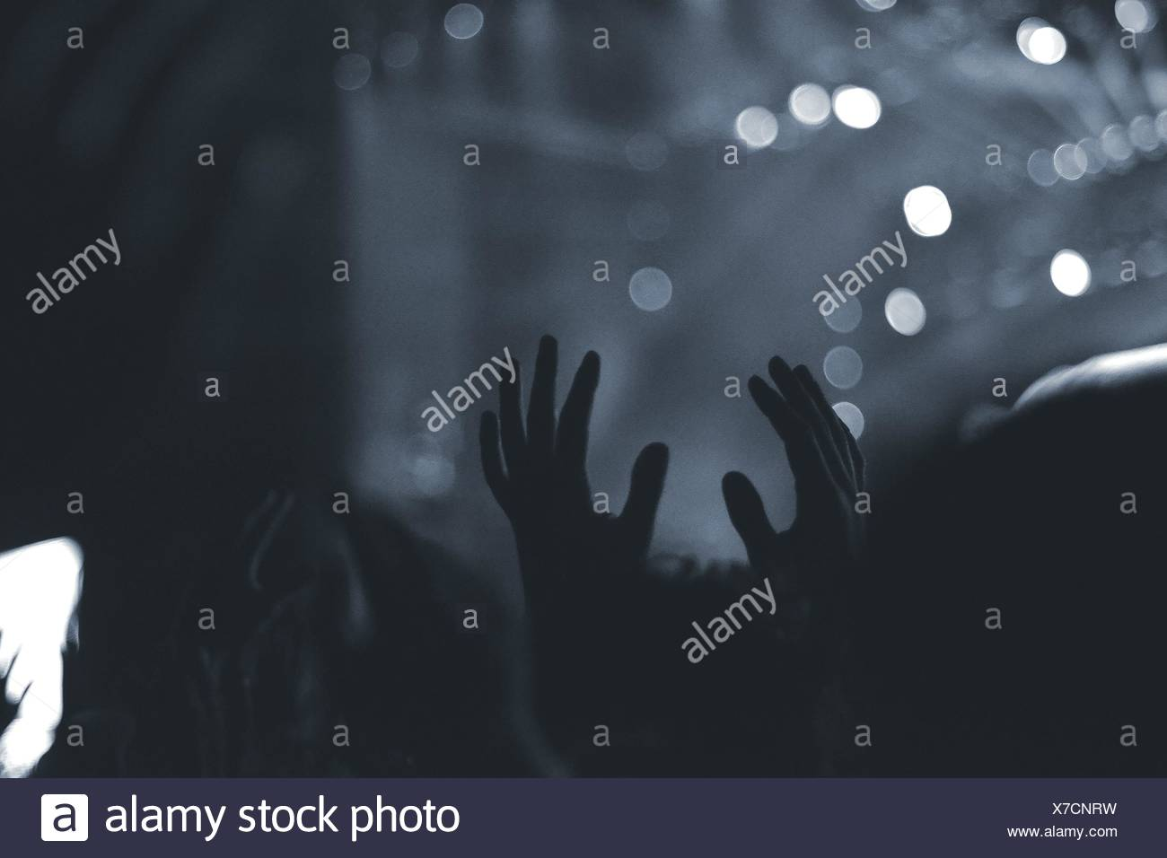 Crowd With Arms Raised In Music Concert - Stock Image