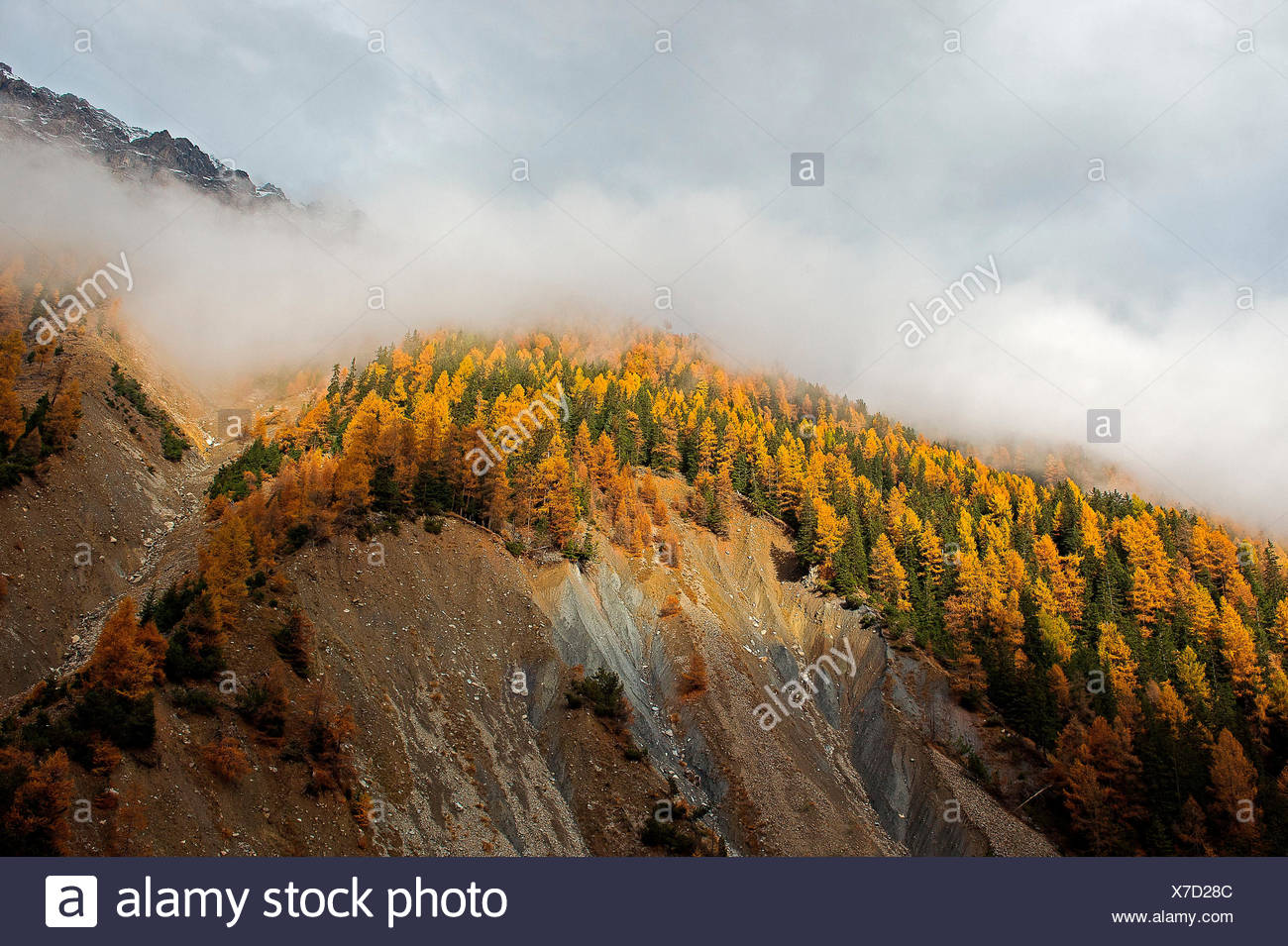 Val Zebru, Bormio, Lombardy, Italy One glimmer of light is the space between the clouds and illuminates the Val Zebru - Stock Image