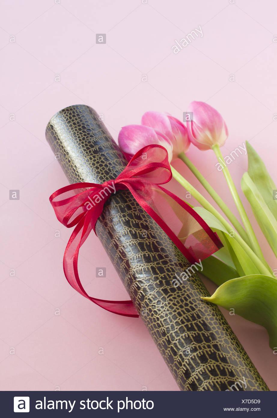 Diploma tube and tulips - Stock Image