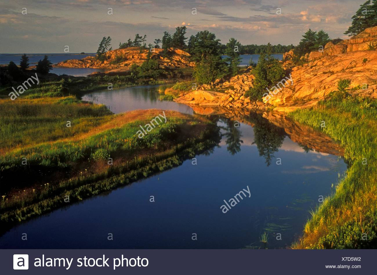 Evening light on granites and white pine at mouth of Chikanishing Creek in Georgian Bay, Killarney Provincial Park, Ontario, Canada. - Stock Image