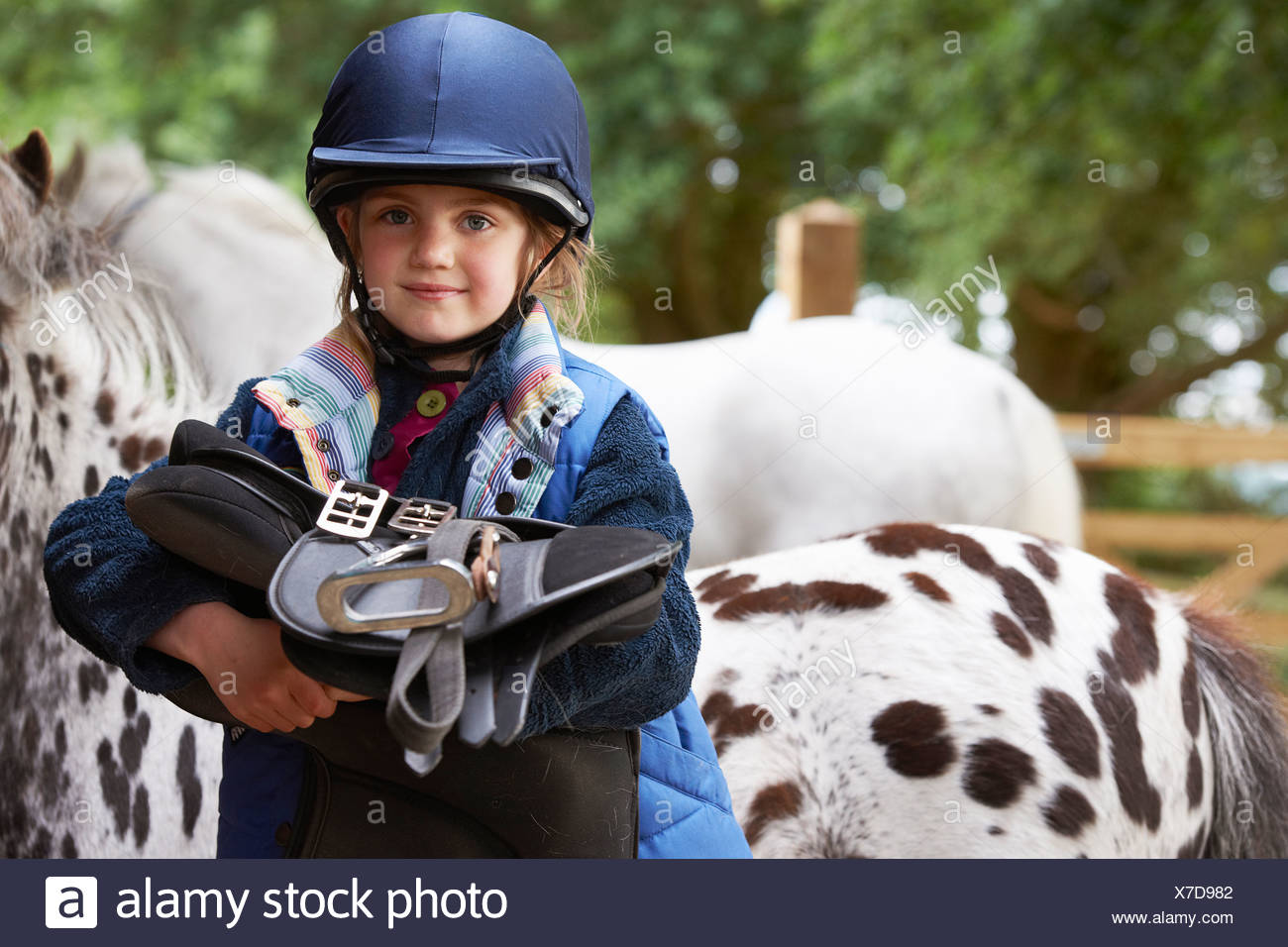 Young girl holding a saddle with ponies - Stock Image
