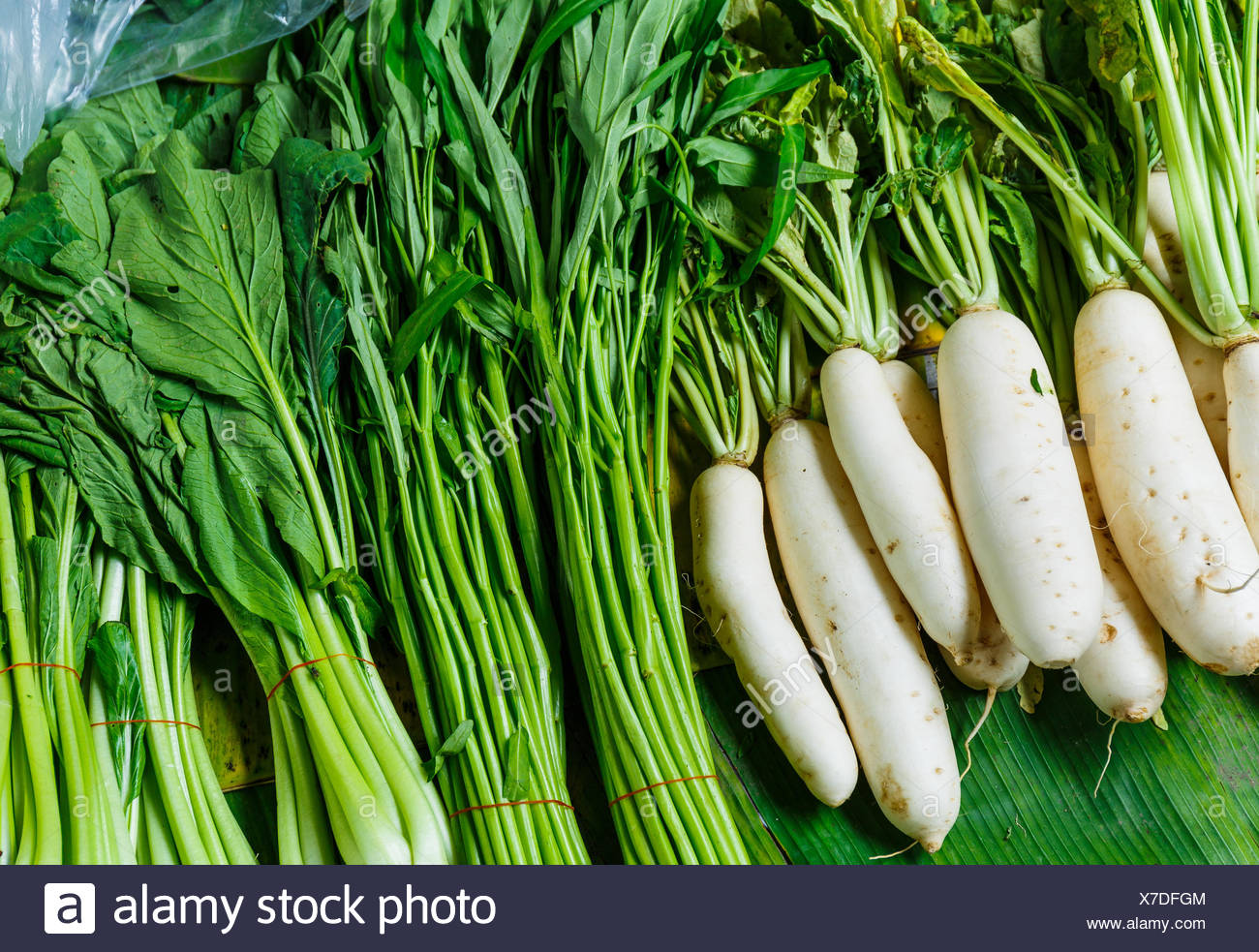 food aliment sell agriculture farming harvest root vegetable chinese stalk stem radish product celery organic chop white - Stock Image