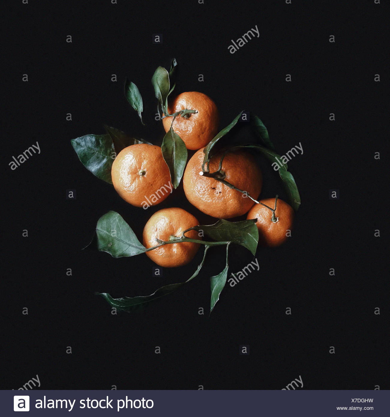 Overhead view of fresh tangerines with leaves - Stock Image