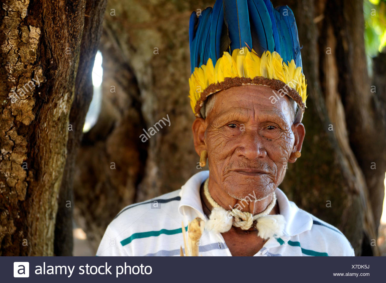 Cacique of the Xavante people, indigenous tribe, with the headdress of a chief, Primavera do Leste, Mato Grosso, Brazil - Stock Image
