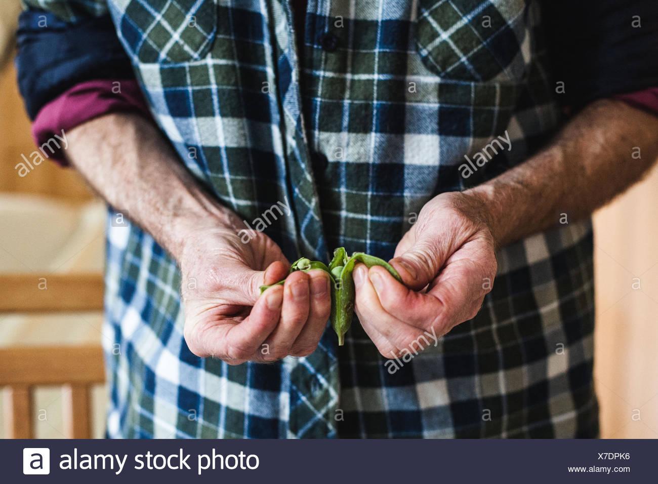 Senior man shelling fresh peas Stock Photo