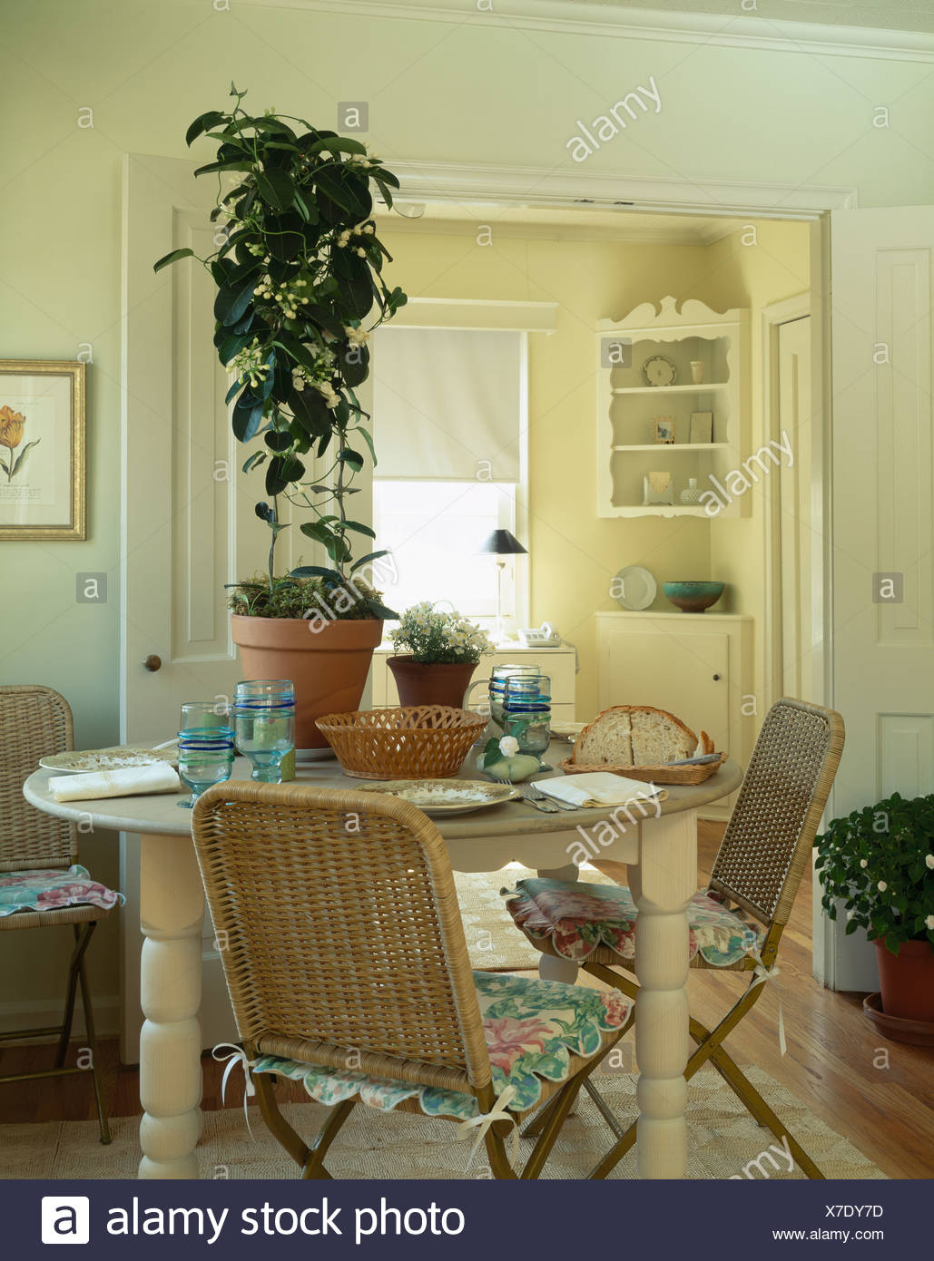 Tall Green Houseplant On Circular Cream Table In Dining Room With Floral Cushions Wicker