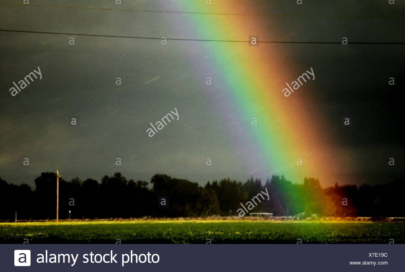 Rainbow Over Field - Stock Image