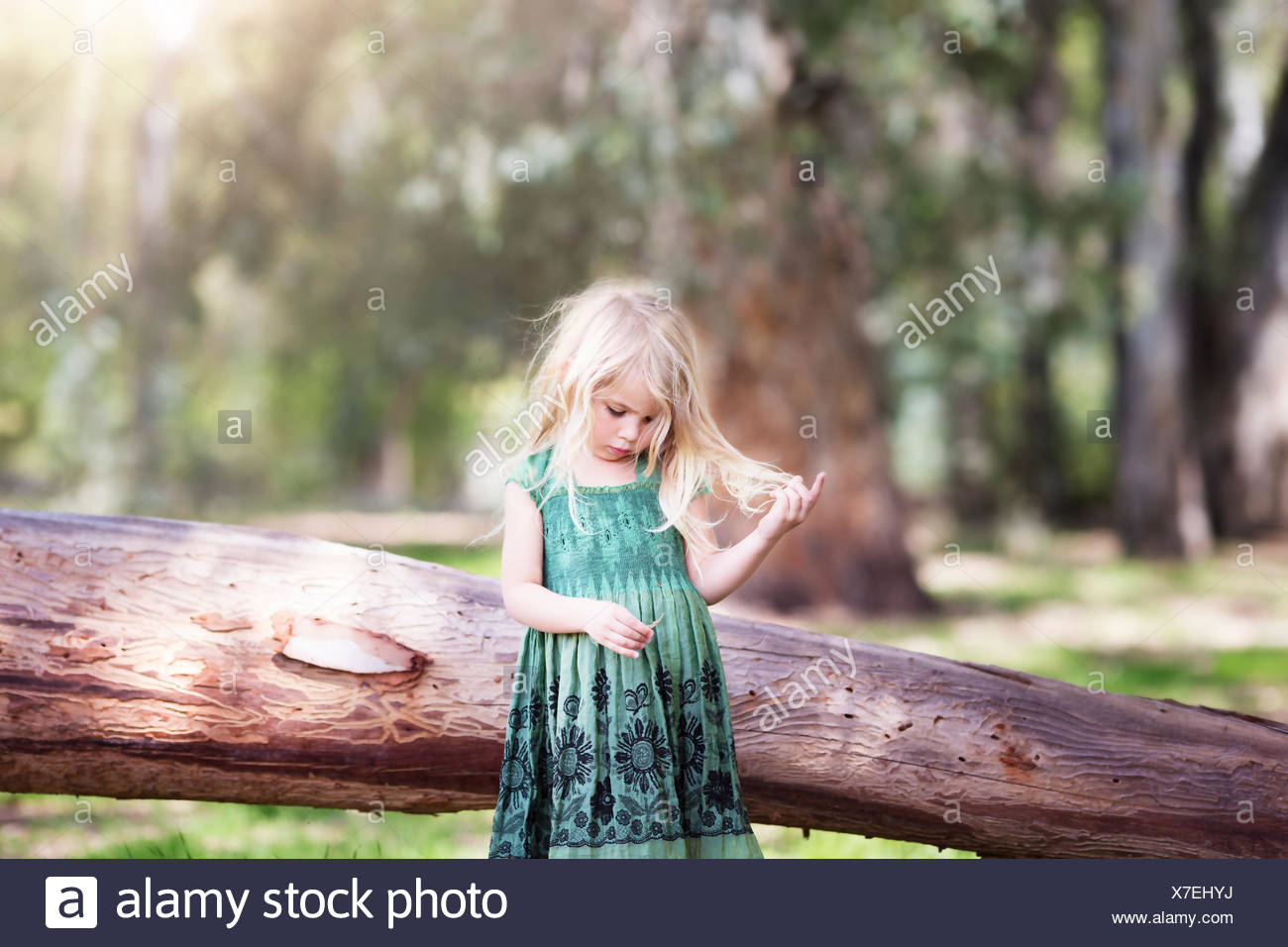 Girl (4-5) playing with hair in woodland - Stock Image