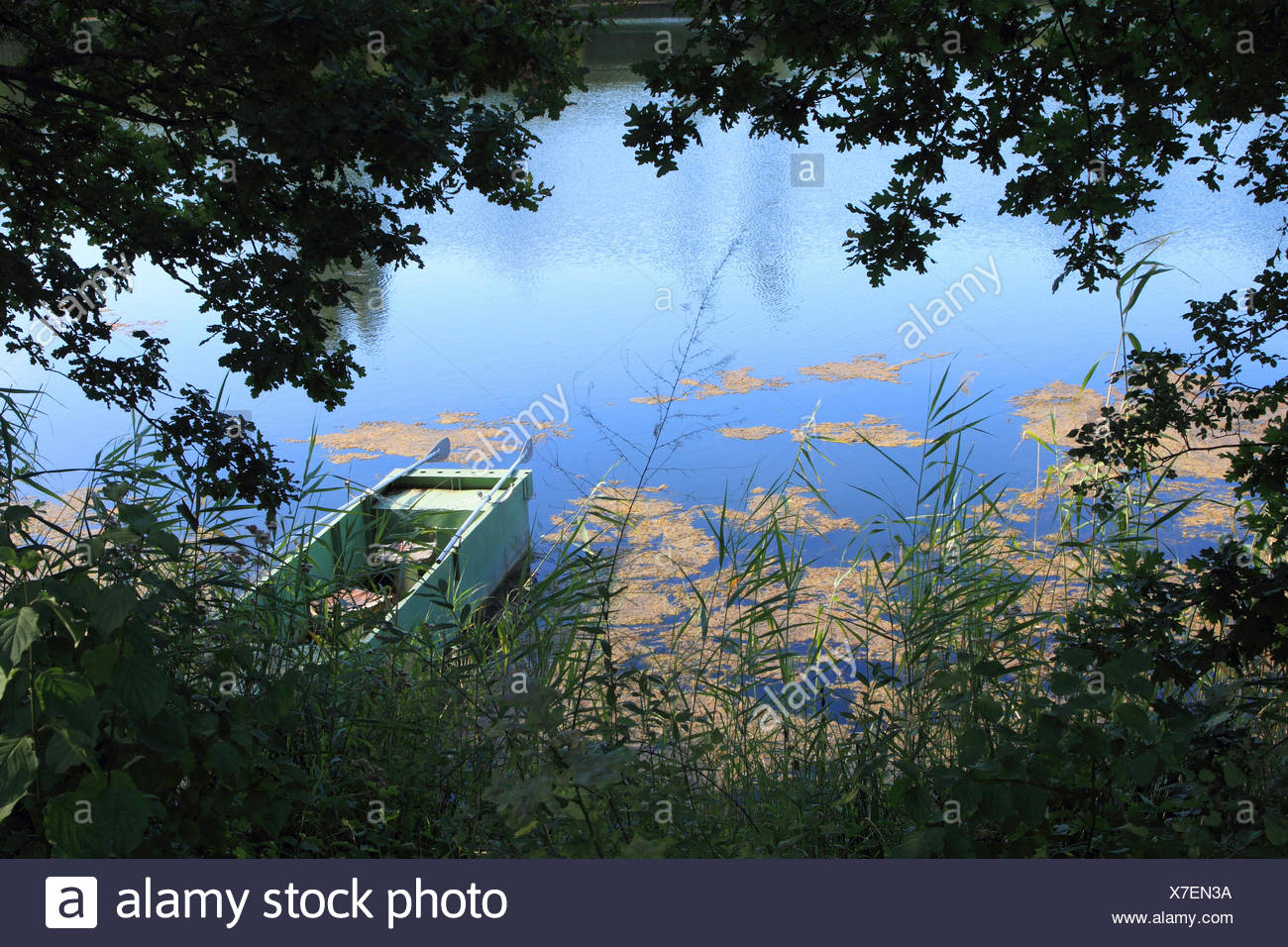 floodplain landscape in sommer with rowing boat, Germany - Stock Image