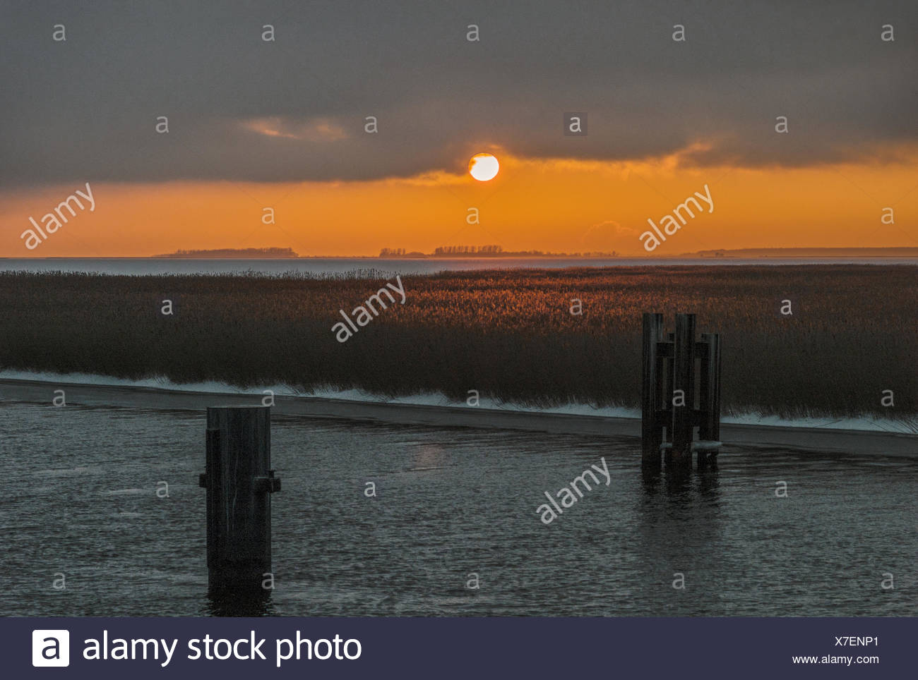 The Baltic Sea - evening light at the Bodstedter Bodden Stock Photo