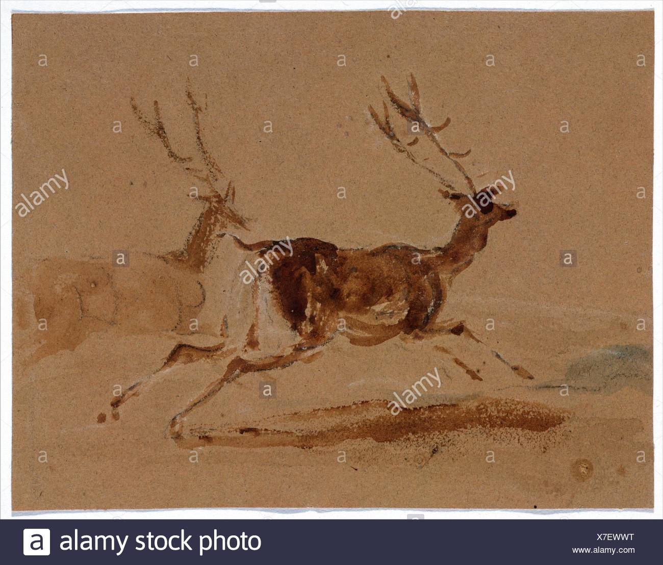 Two Stags Running. Artist: Sir Edwin Henry Landseer (British, London 1802-1873 London); Date: 1820-73; Medium: Brush and brown wash over graphite; - Stock Image