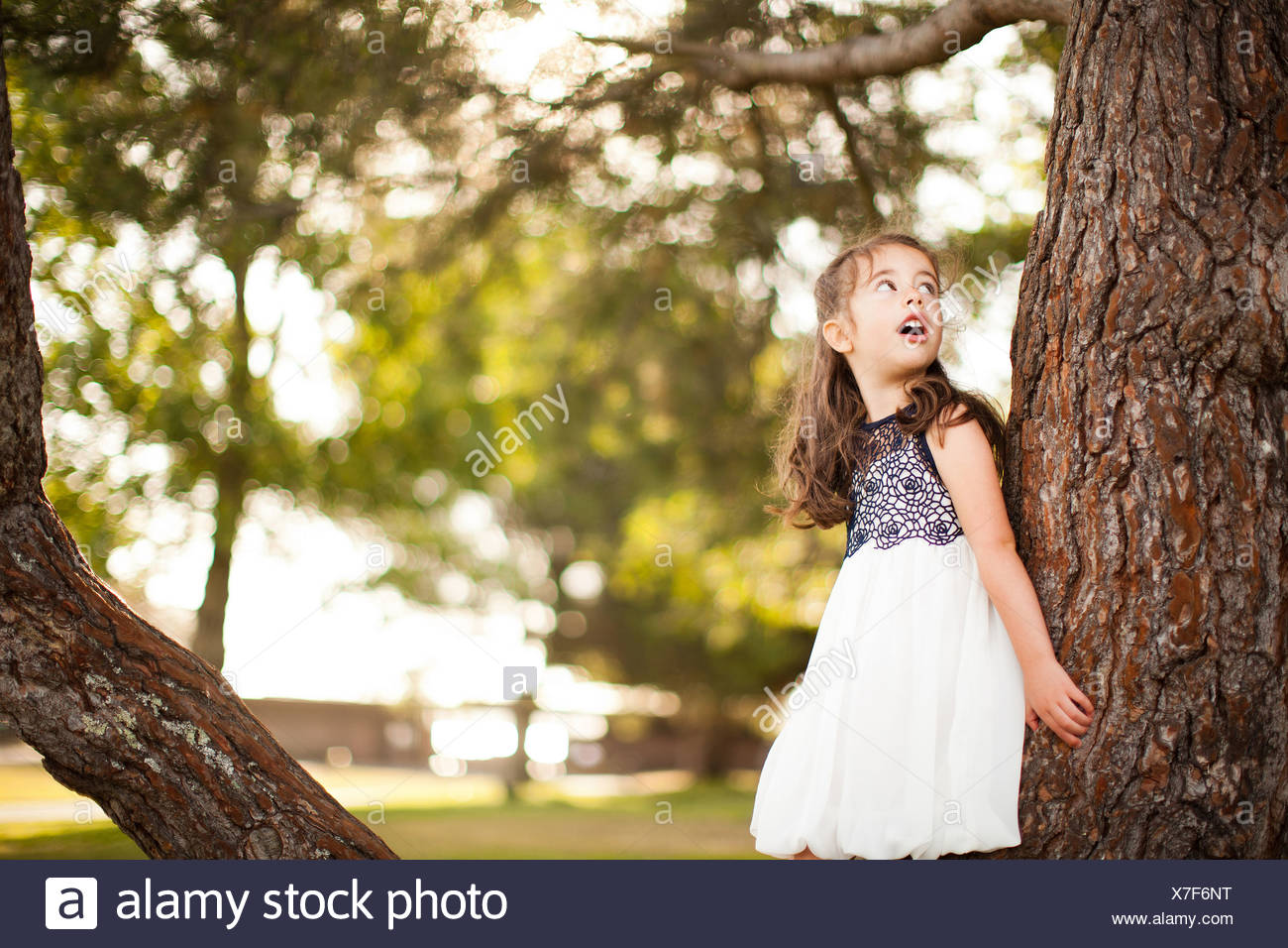 Portrait of girl leaning on tree trunk looking up - Stock Image