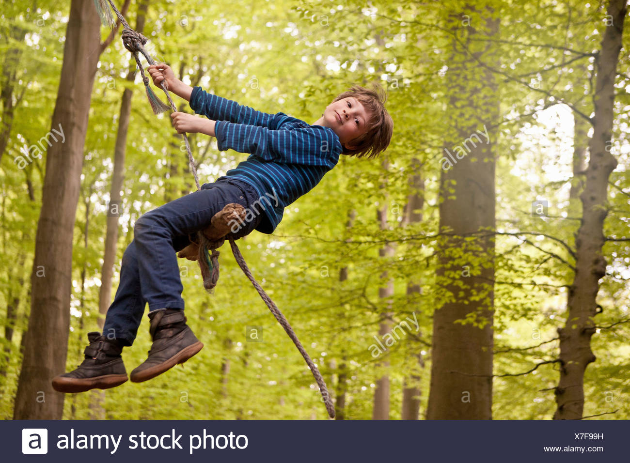 Boy swinging on rope in forest - Stock Image