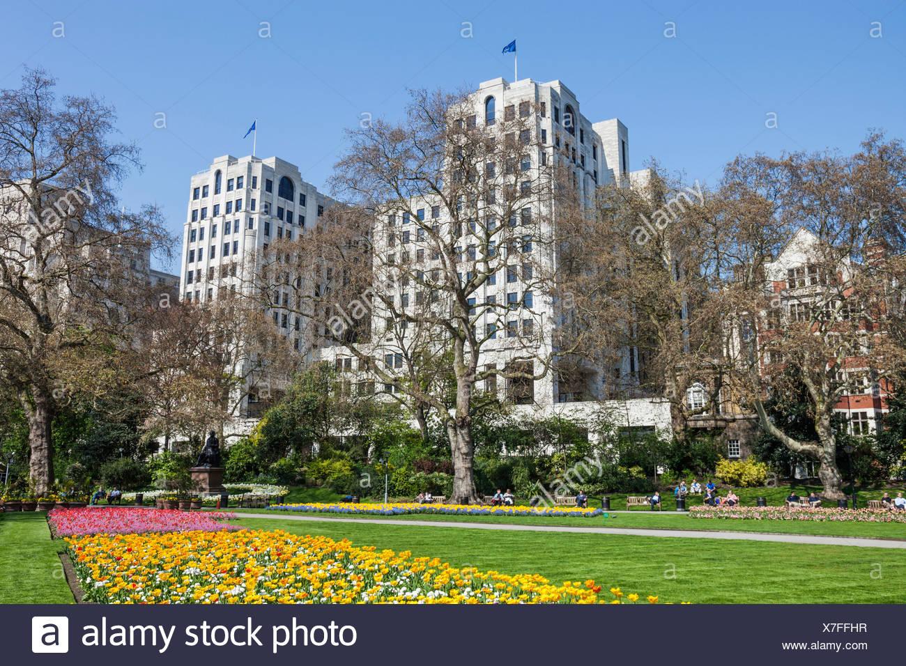 England, London, Embankment Gardens, Spring Flowers - Stock Image