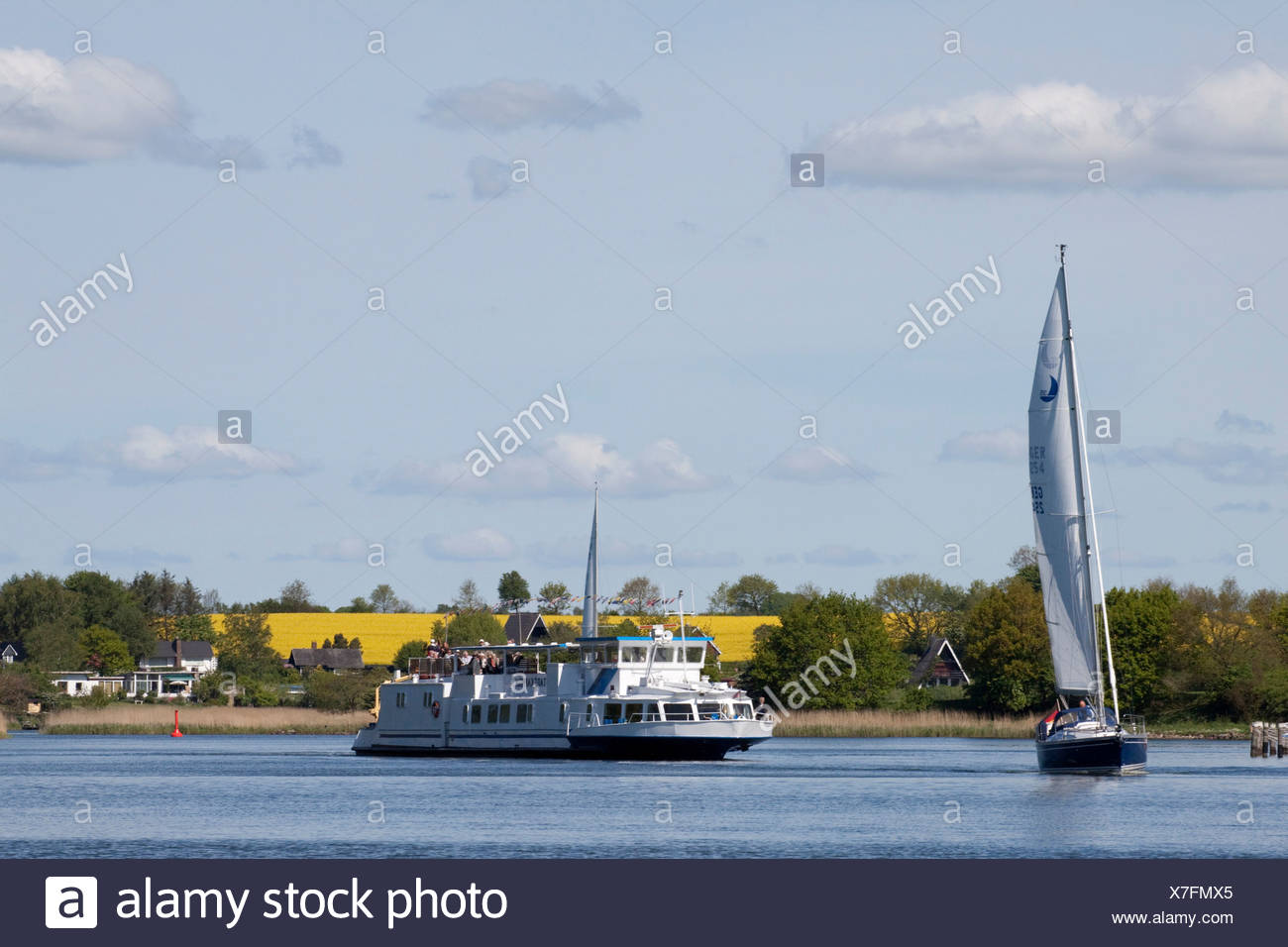Passenger vessel on the Schlei estuary, Schleswig-Holstein, northern Germany, Germany, Europe - Stock Image